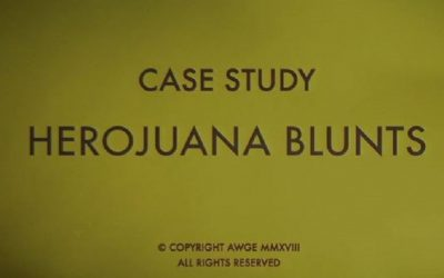 A$AP Rocky - Herojuana Blunts (Music Video)